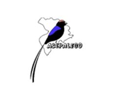 Asepaleco